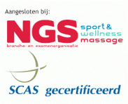 logo ngs scas.png
